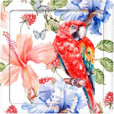Włącznik Wyłącznik Simon Basic + ramka pojedynczy Czerwona papuga